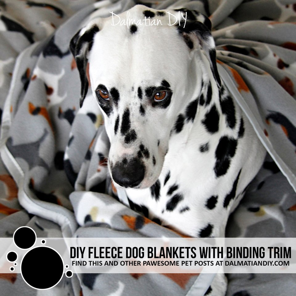 DIY fleece dog blankets with quick dry bound edges