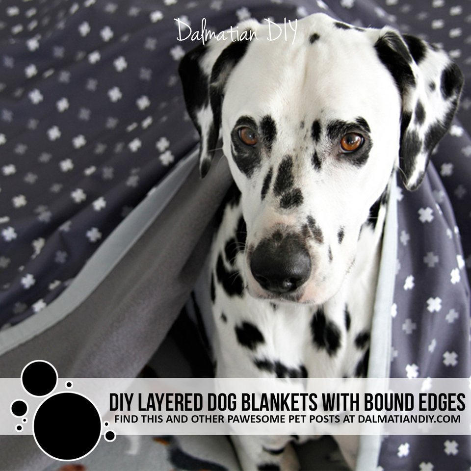 DIY quick dry double layered dog blankets with bound edges