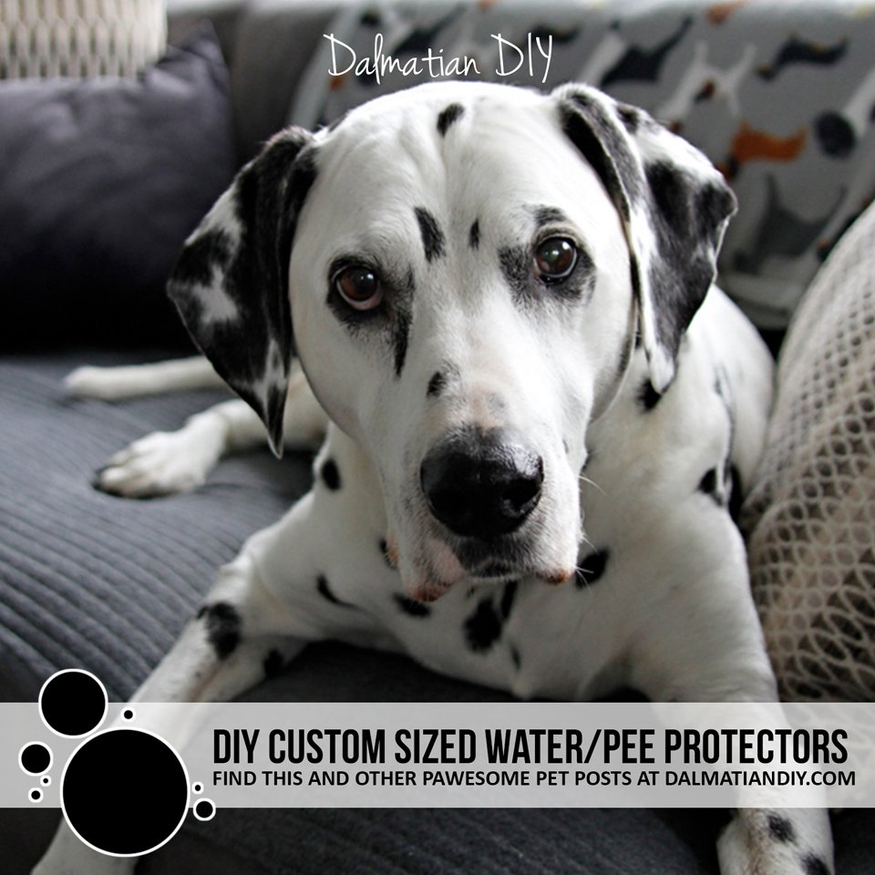 DIY waterproof and pee resistant furniture pads and dog bed toppers