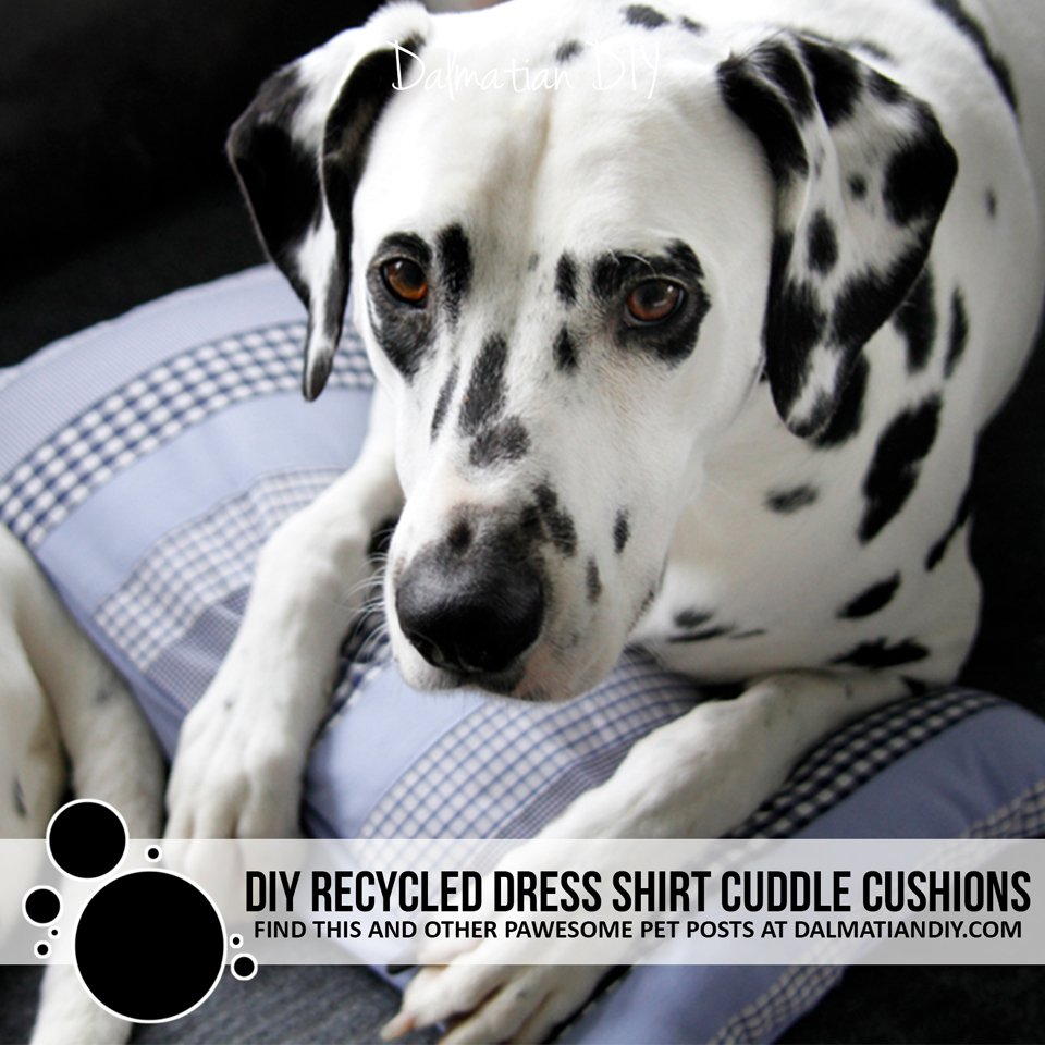DIY recycled dress shirt throw pillow cuddle cushions