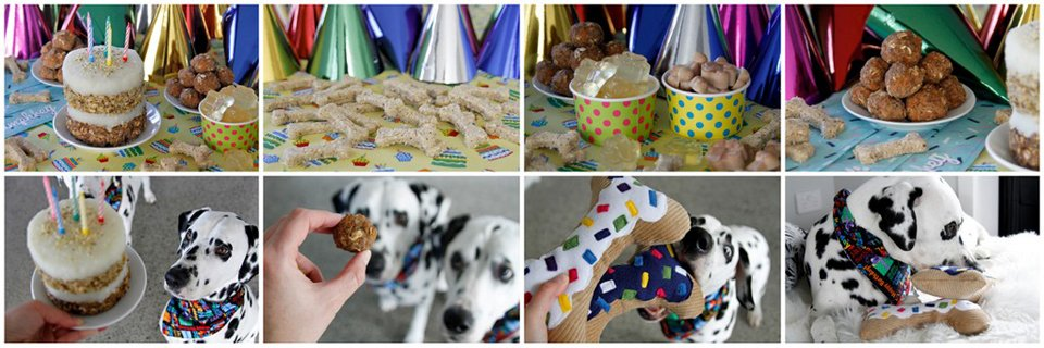 Humphrey the Dalmatian dog's 5th birthday party treats, cake, and toys