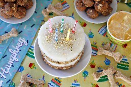 Homemade layered surf n' turf dog birthday cake recipe