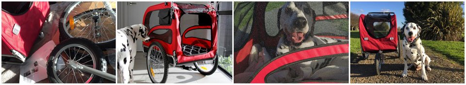 Choosing a dog stroller features and considerations