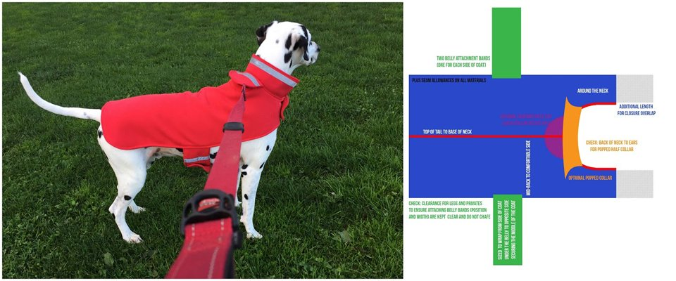 Design elements of custom fitted dog coat pattern