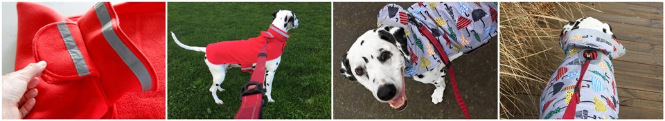 DIY dog coats and raincoats