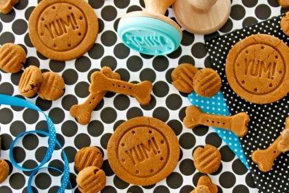Decorating homemade baked biscuit dog treats