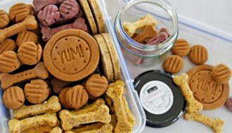 Storing homemade baked biscuit dog treats