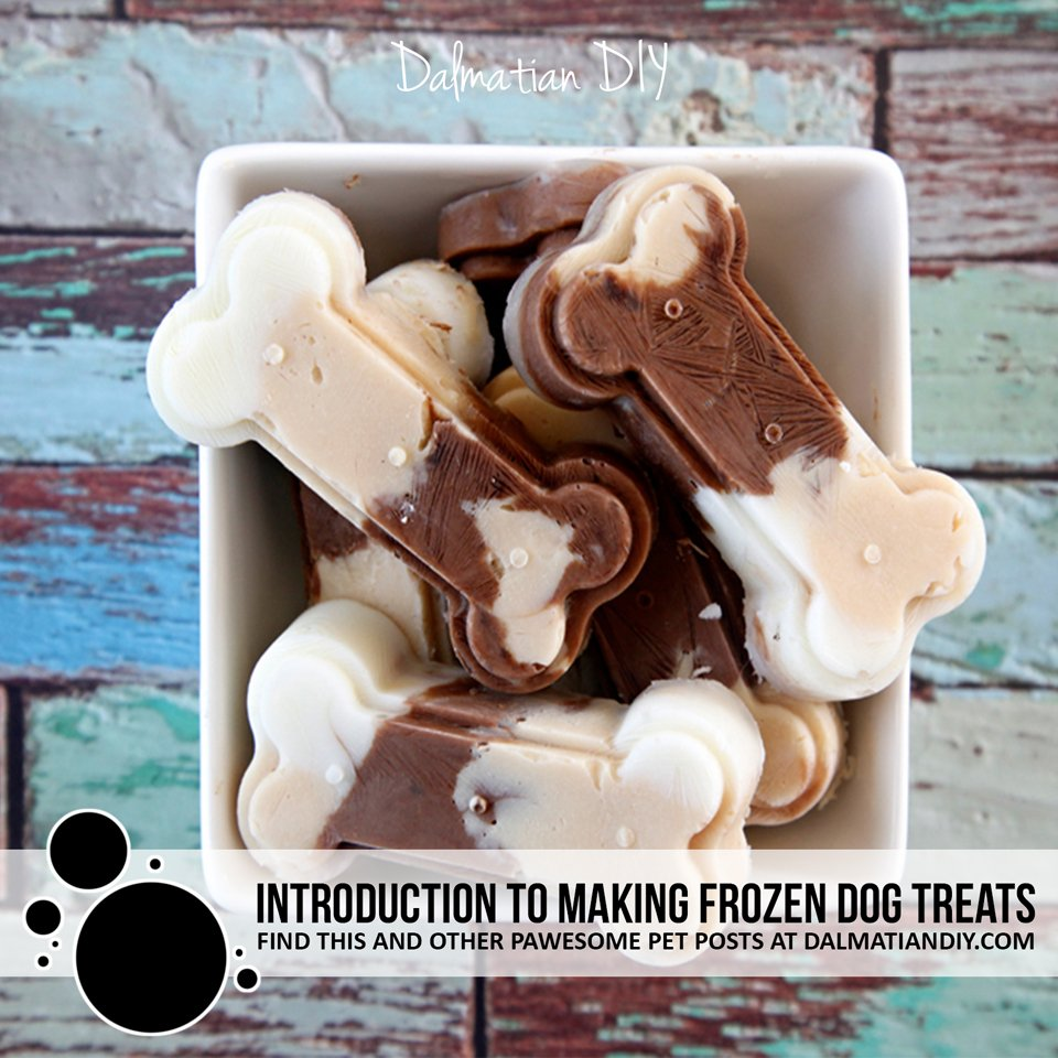 Introduction to making homemade frozen dog treats