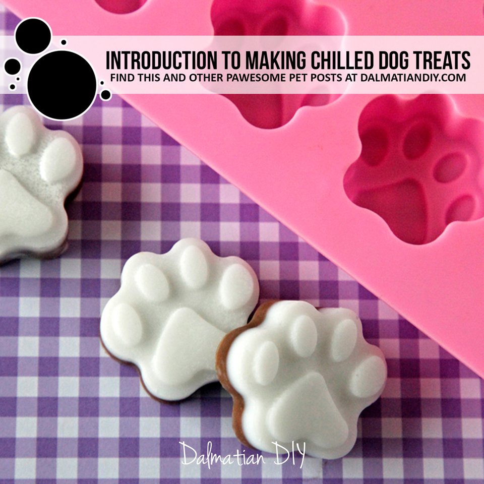 Introduction to making homemade chilled dog treats