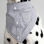DIY mini dress shirt dog bandana