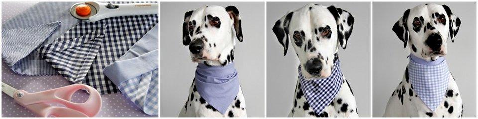 DIY no-sew dog bandanas