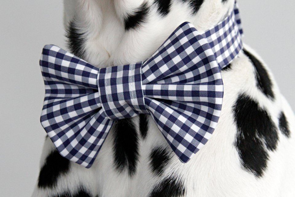 DIY upcycled French cuff dog bow ties and button placket collar bands