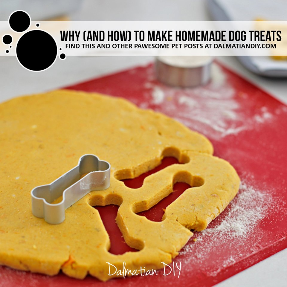 Why and how to make homemade dog treats
