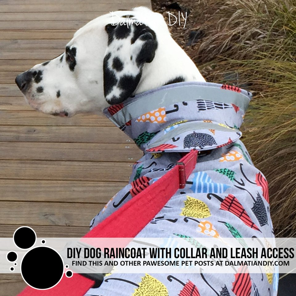 DIY dog raincoat with popped collar and shielded leash access hole