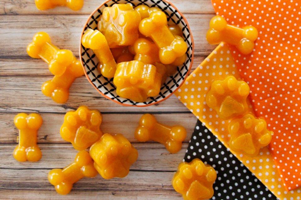 Homemade pumpkin gelatin gummy dog treat recipe
