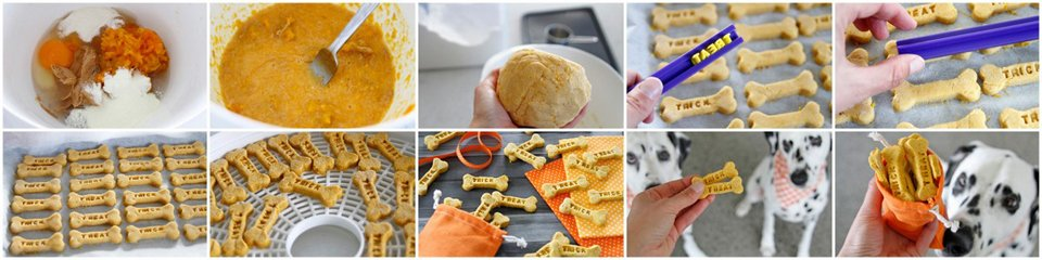 Step by step making peanut butter and pumpkin dog treats for Halloween