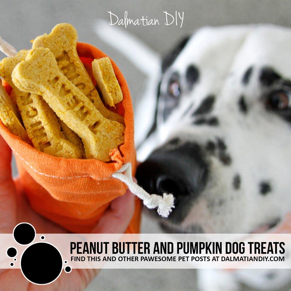 Halloween trick or treat peanut butter and pumpkin dog treat recipe