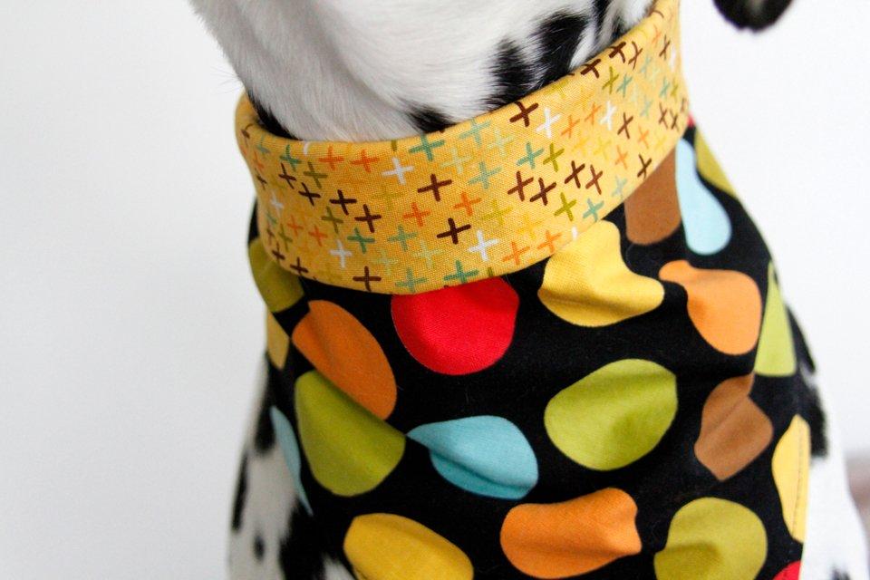 Styling a DIY Reversible Dog Bandana for Versatile Wear