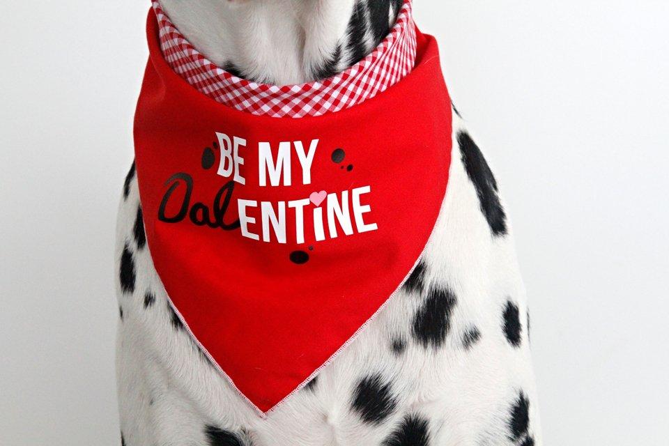 Dalentine Dalmatian Valentine's Day dog bandana
