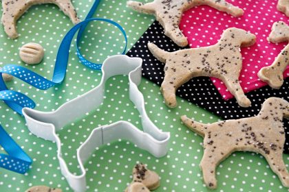 Homemade Dalmatian spotted dog treats with chia seeds