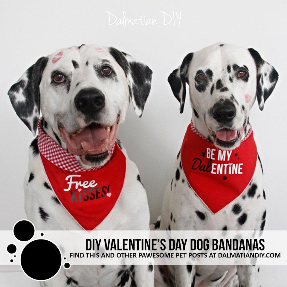 DIY Valentine's Day dog bandanas with Cricut iron-ons