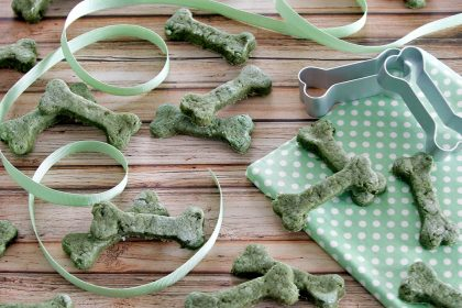 Homemade cucumber and salmon baked biscuit dog treat recipe