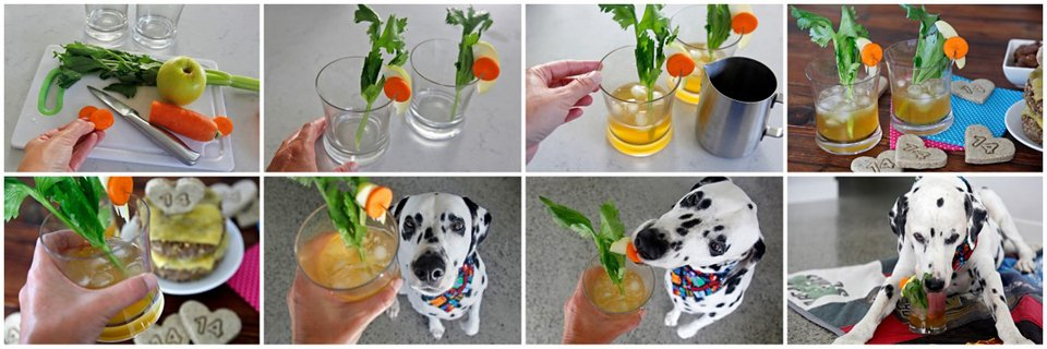 Making quarantini mocktail dog drinks