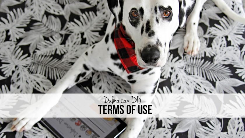 Dalmatian DIY Dog Blog Terms of Use