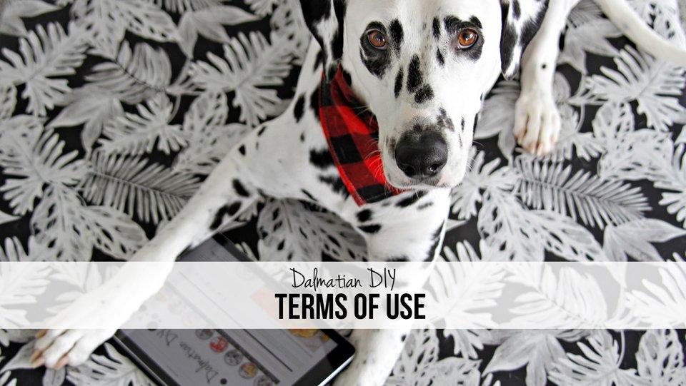 Dalmatian DIY Dog Blog Terms of Use