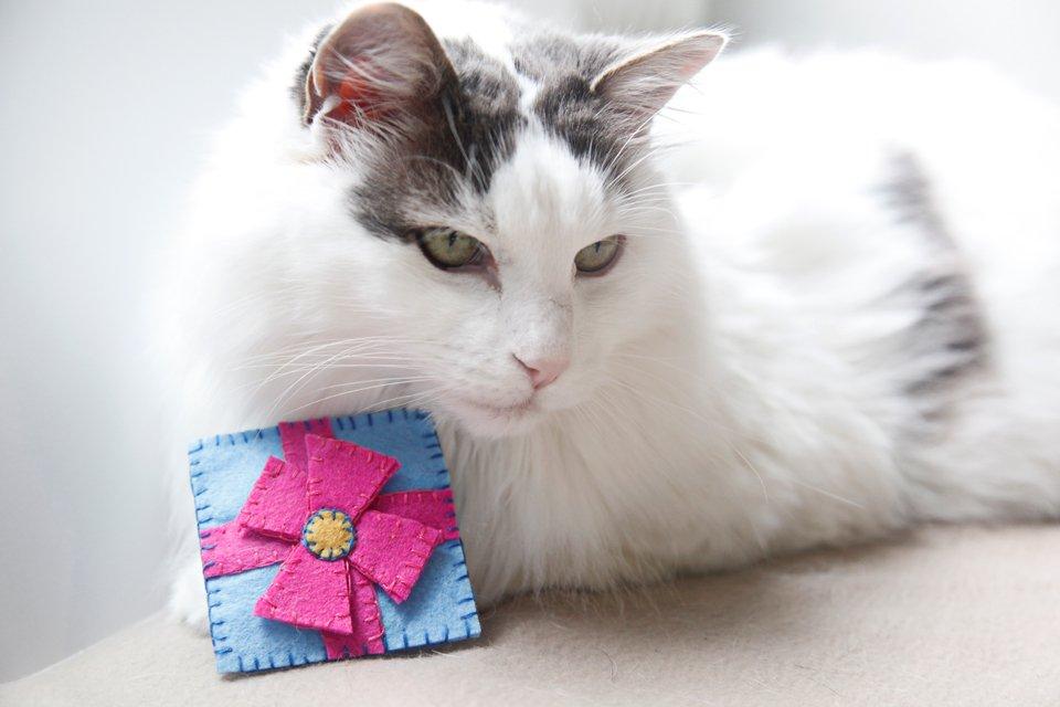 DIY Felt Cat Toys