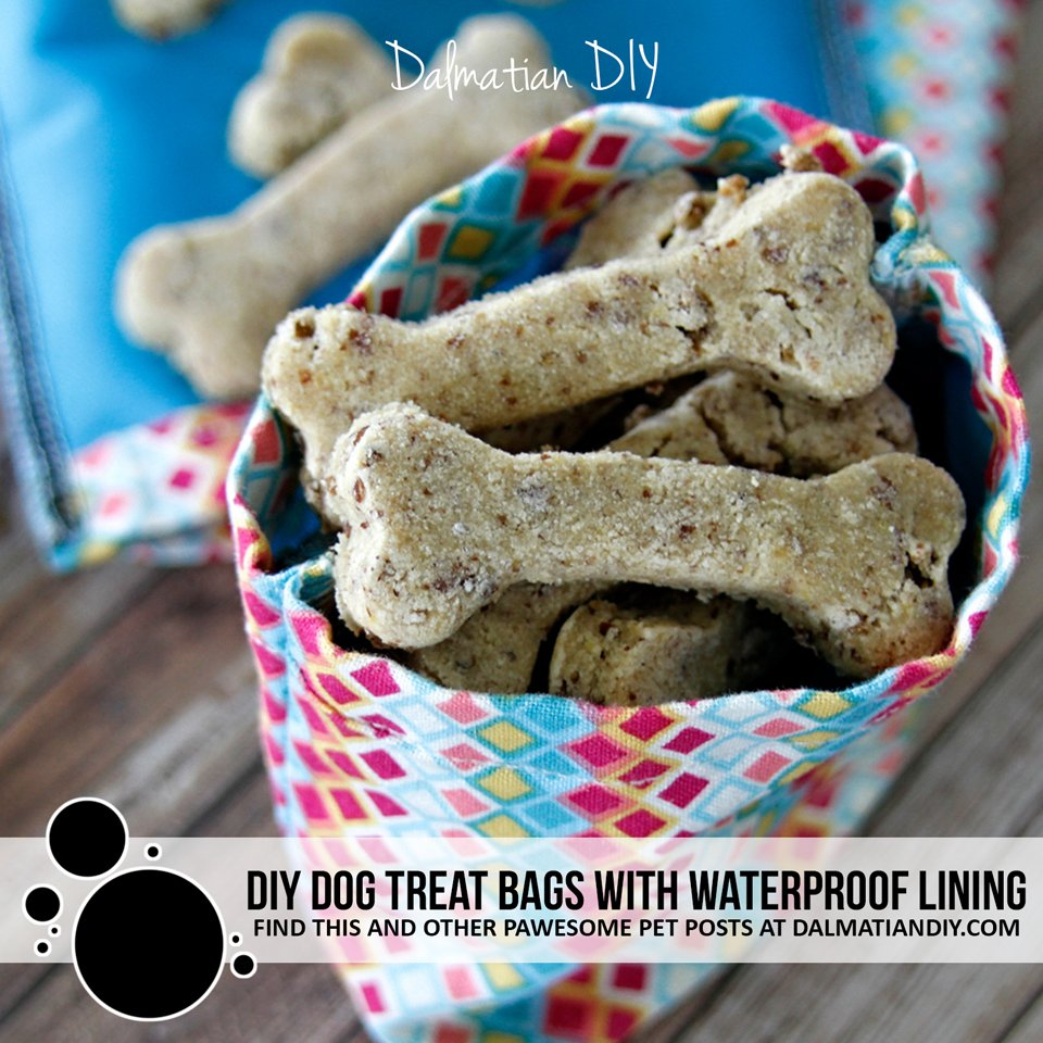 DIY reusable dog treat bag with waterproof liner