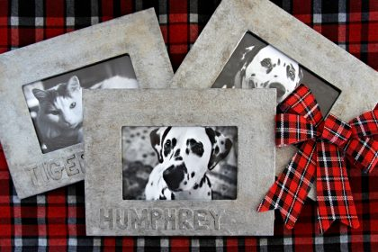 DIY faux vintage metallic personalised pet picture frames