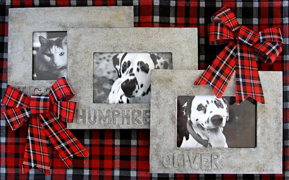 DIY Personalised Pet Picture Frames