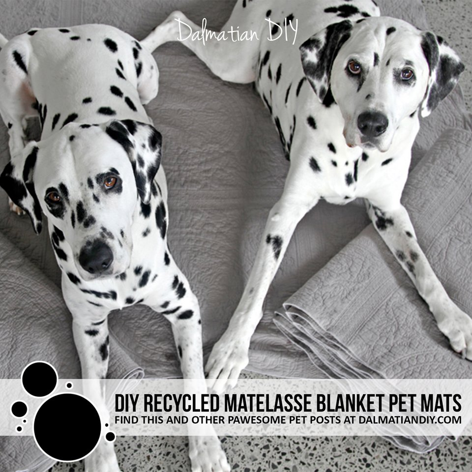 DIY recycled matelasse blanket dog mats