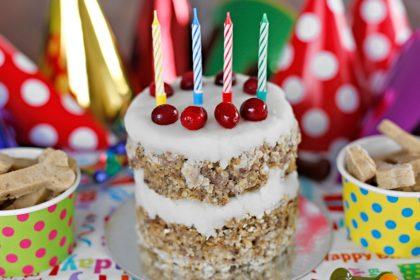 Homemade layered lamb dog birthday cake recipe