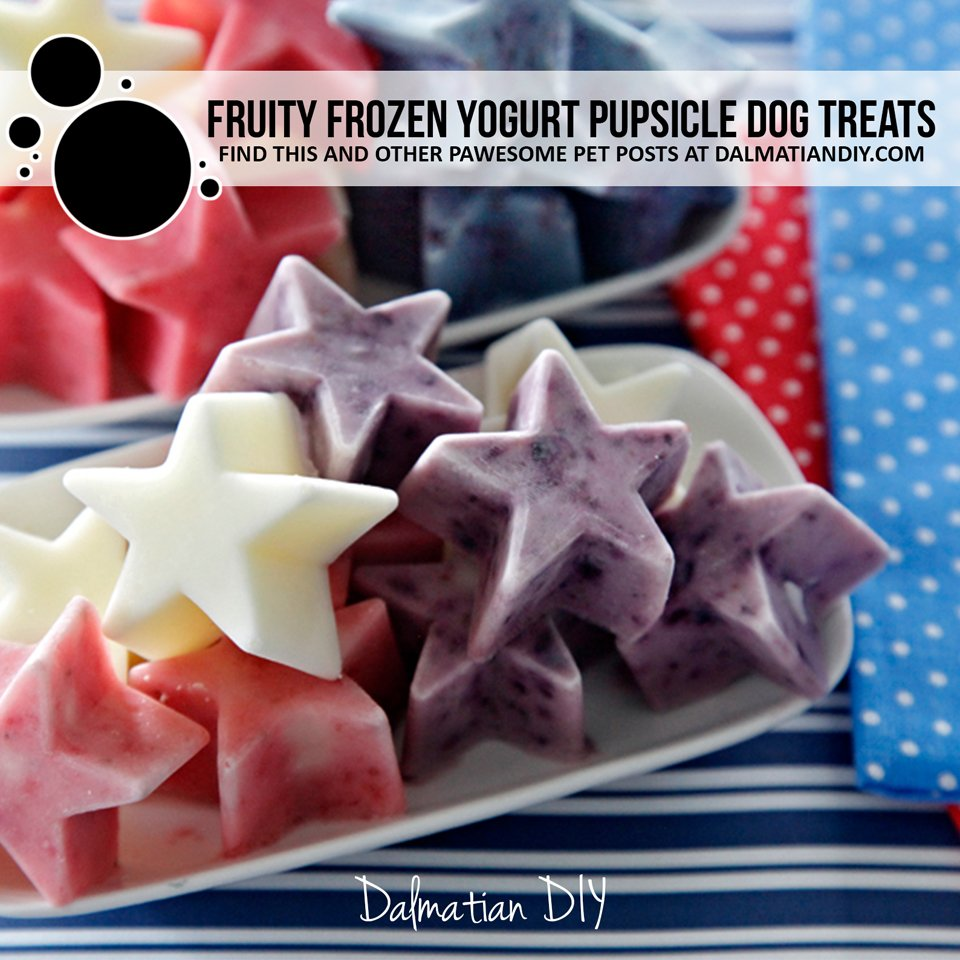 Fruit and yogurt frozen star Fourth of July dog treats