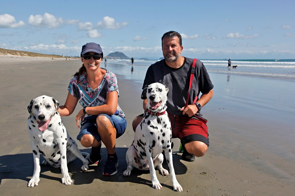 Family portrait of the blog dogs of Dalmatian DIY and their humans