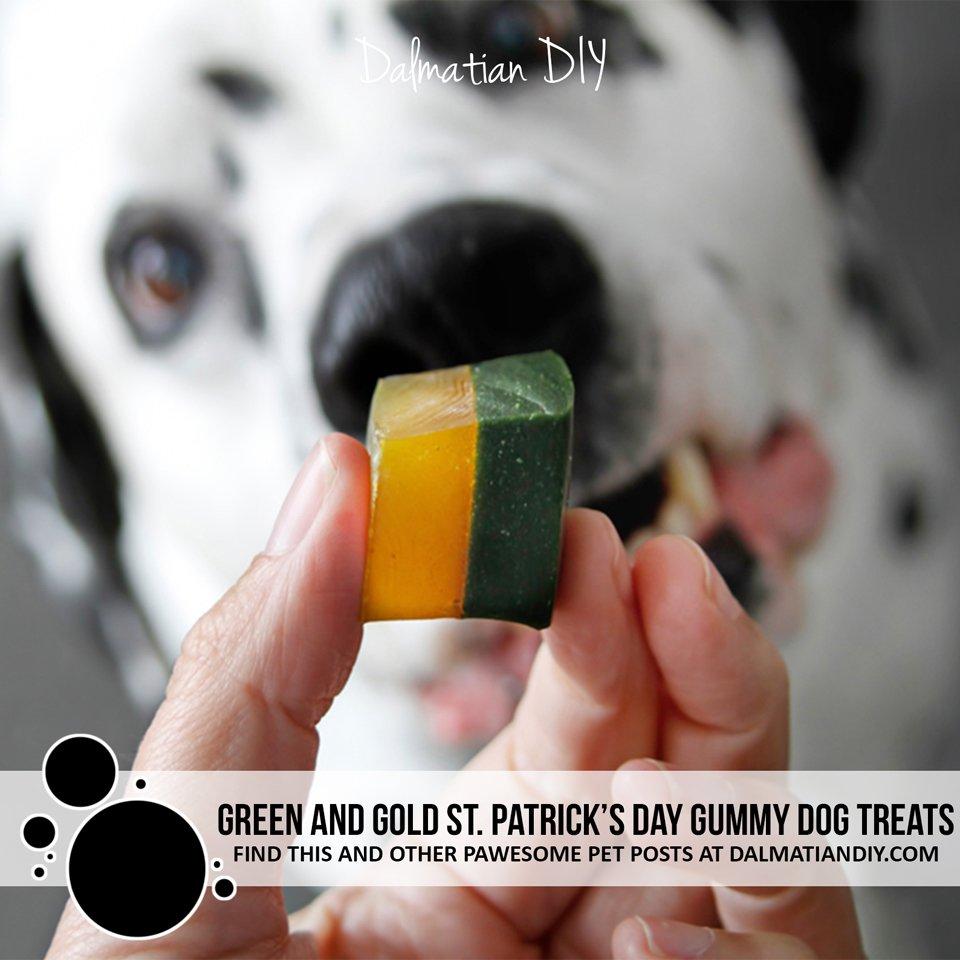 Naturally green and gold layered gelatin gummy dog treat recipe