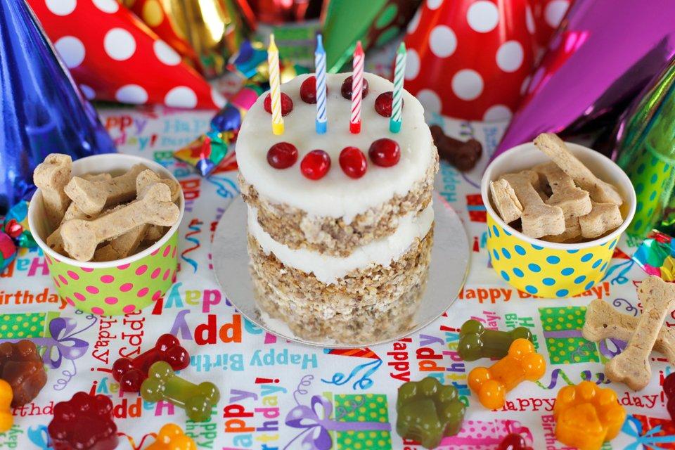 Humphrey the Dalmatian dog's 4th birthday party cake and treats