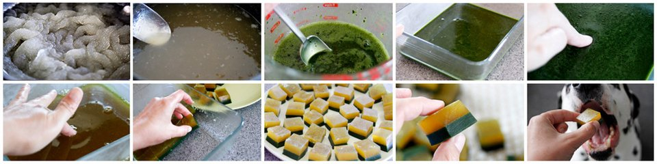 Making green and gold layered gelatin gummy dog treats