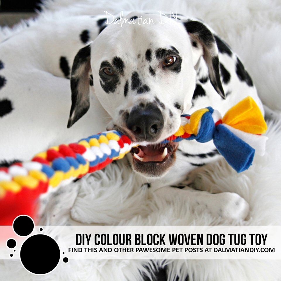 DIY colour block woven fleece dog tug toy