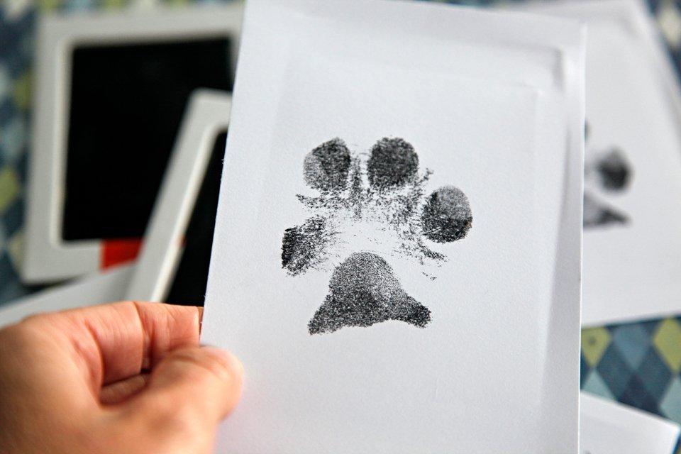 DIY ink dog paw print