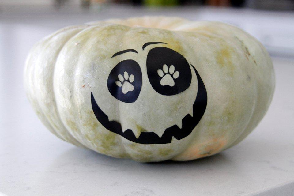 DIY Cricut dog paw eyed Halloween pumpkin decorations