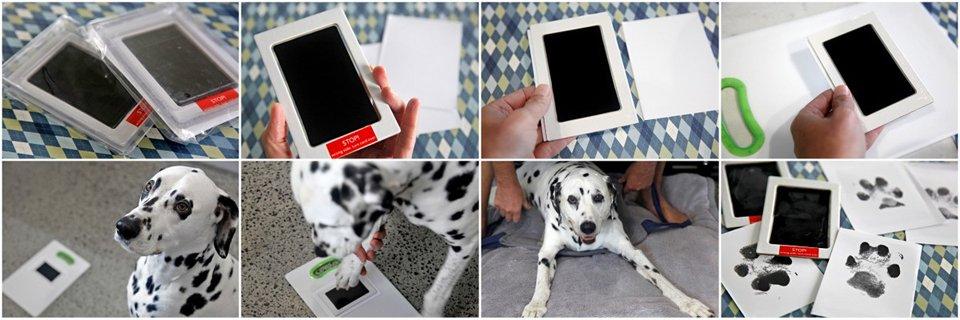 Using baby print touchless ink kits to take mess free dog paw prints