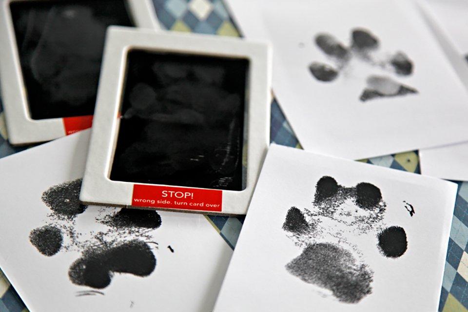 Easy mess free DIY ink dog paw prints