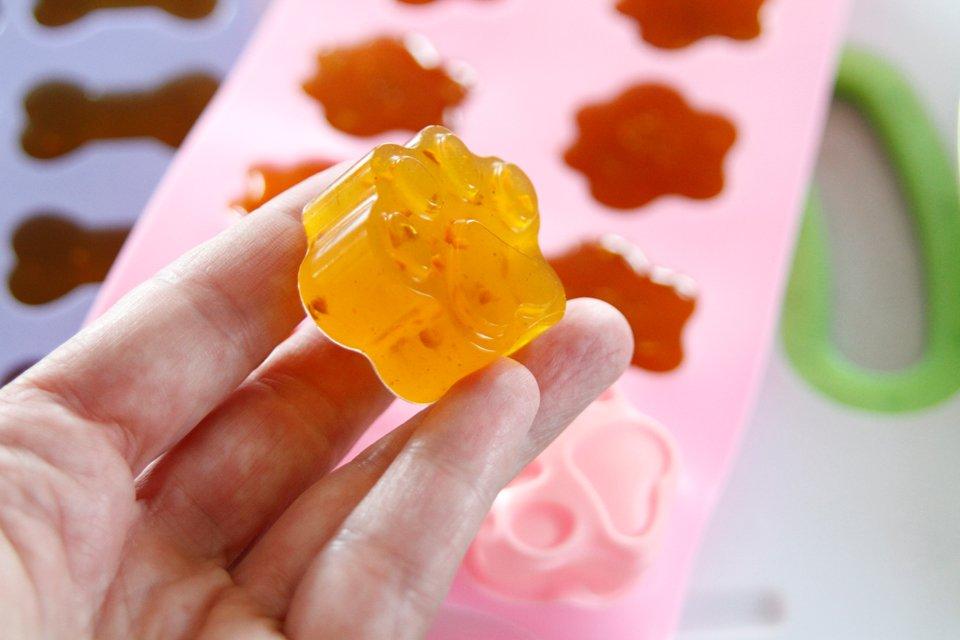 Homemade gelatin gummy dog treats with fresh turmeric
