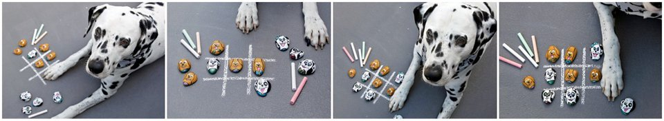 Dalmatian dog playing tic tac toe with painted dog rocks