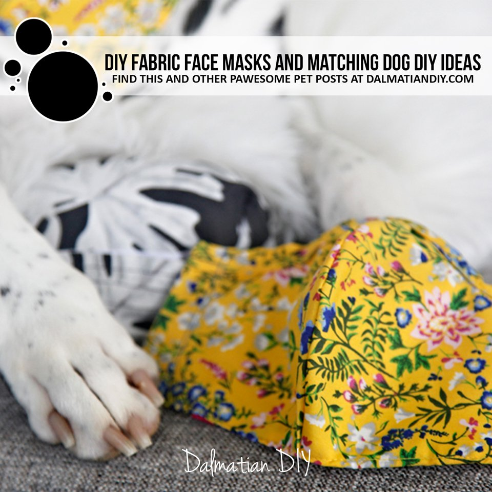 DIY fabric facemasks, matching dog accessories, and more