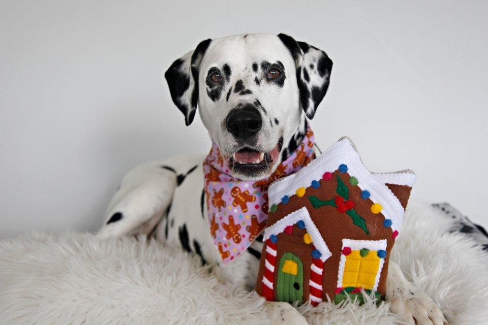 DIY gingerbread house Christmas dog toy