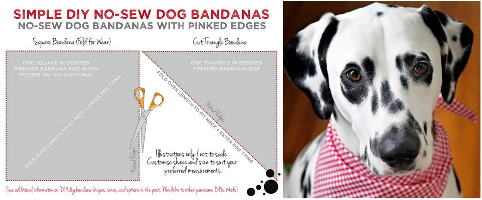 Diagram for making an easy no sew dog bandana with pinked edges
